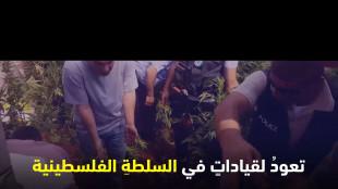 في عرف السلطة التاجر برئ والمدمن متهم