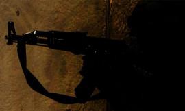 توحش الفلتان الأمني