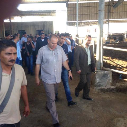 حرق مزرعة أبقار للمواطن/سامي العدرة