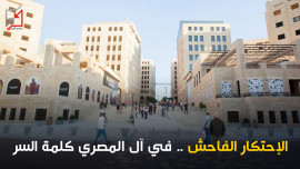 الإحتكار الفاحش .. في آل المصري كلمة السر
