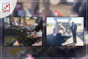 الضابطة الجمركية تتلف كمية كبيرة من زيت الزيتون فى نابلس لعدم دفع الجمرك