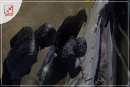 مجهولون يسرقون مزرعة المواطن محمد دراغمة في طوباس