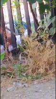 القنصلية الفلسطينية في تركيا تطرد أحد المواطنين العالقين في تركيا