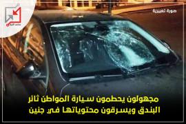 سطو على سيارة المواطن ثائر البندق وتحطيمها وسرقة محتوياتها