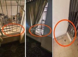 """مجهولون يسرقون  """"صندوق تبرعات """" من داخل متوضأ مسجد العين في مدينة البيرة."""